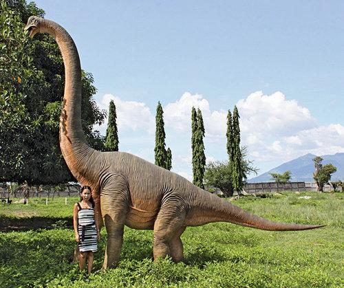 玻璃钢大型恐龙雕塑